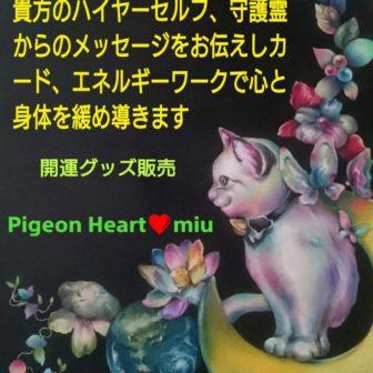 Pigeon Heart 田中 美代子